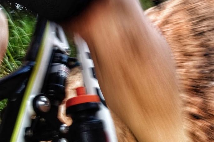 Governo Federal recua e imposto de importação de bicicletas terá redução de 10%, saindo de 35 para 31,5%